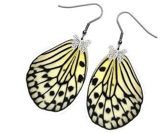 Real Butterfly Wing Earrings (Leuconoe Hindwing - E090)
