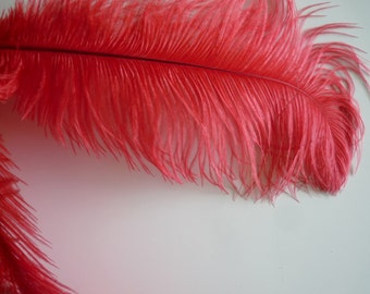 VOGUE OSTRICH PLUMES , Strawberry Red , 1 piece /  553 / On Sale