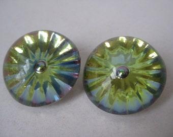 Aurora Borealis Flower Earrings Clip Plastic Vintage