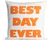 "BEST DAY EVER -recycled felt applique pillow 16"" x 16"""