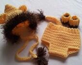 Crochet Pattern, Lion Crochet Bonnet, Diaper Cover,Wristlets/Anklets,Photo Prop, Sizes Newborn - 12mos,  Instant Download Available