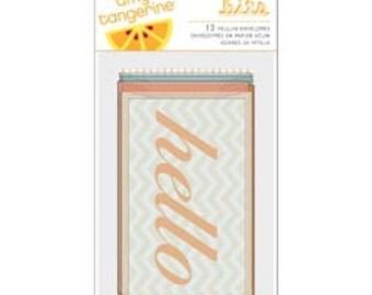 Amy Tangerine - Bits Vellum Envelopes - Sketchbook - American Crafts