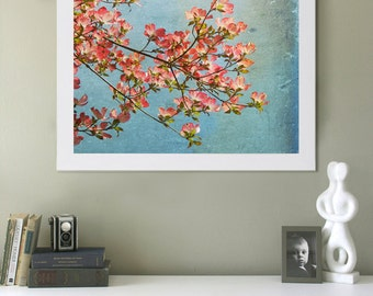 May Art Print.  Nature photography, floral photography, large art print, blue skies, dogwood blossoms.