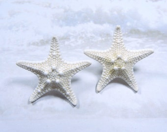 Starfish Earrings - Little Stars