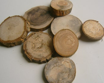 200 Assorted  Blank Tree Branch Slices 1.5 to 2 inch
