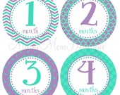 FREE GIFT, Baby Girl Monthly  Stickers, Baby Girl Month Stickers, Milestone Photo Prop  Stickers Aqua Purple Chevron Dots Shower Gift