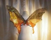 OOAK Unique Brown Autumn Fall Iridescent Fairy Wings Woodland Fairy Costume