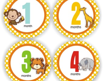 Baby Stickers - Baby Month Stickers - Baby Boy Monthly Stickers - Baby Shower Gift - Animals Baby Month Stickers
