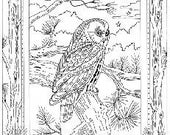 Night Owl Iron on Hand Embroidery Pattern (original design)