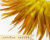 60pcs +- YELLOW - Rooster Saddle feathers - 2 inch strip - two-tone, pointy tip, shiny feathers, exotic feathers (RS007)