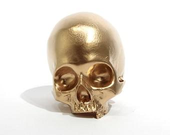 BLING! Homo sapiens gold skull