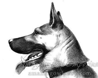 German Shepherd in Profile - 8x10 Giclee Print