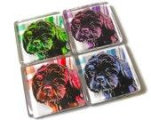 Pop Art Dog Magnets, Black Shih Tzu, Puppy, Gift for Dog Lovers