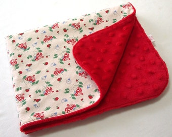 Mini Baby Blanket / HOLIDAY SALE / 20% DISCOUNT / Lovey Blanket / 20 x 15 inches / Little Red Schoolhouse / Cotton and Minky