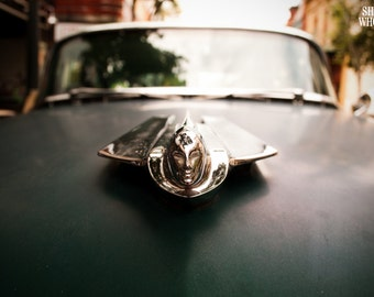 Cadillac Photograph - Metallic Photo Print of Vintage Cadillac Hood Ornament - Large Dark Green & Silver Wall Art for Home, Office or Garage