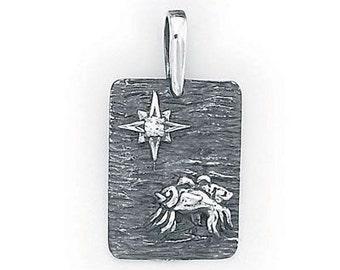 Pisces  Zodiac Pendant   Sterling Silver   505-12