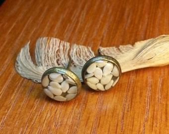Spicy Studs - Sesame Seed Earrings