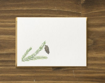 spruce evergreen gold holiday card