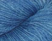 Shirley's Blue Kettle Dyed Valhalla Yarn