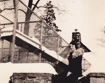 On the Snowy Roof - Vintage Photograph (BBB)