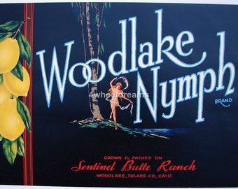 1930s Naked Nymph Dancing in Forest Trees Original Citrus Crate Label