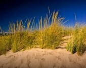 Beach Grass and Sand Dune at the lakeshore on Lake Michigan by Holland Michigan No.969 - a Fine Art Beach Sunset Seascape Photograph