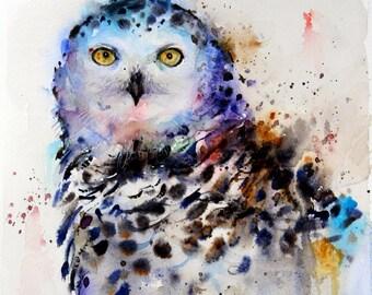 Set of 4 OWL ART Coasters by Dean Crouser