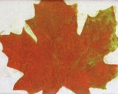 Fall Leaf  Paper Lithographic print