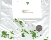 1inch scale  lt grn vellum mini heart punchies - FREE Philodendron instructions