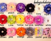 "6 piece 4"" INCH  new gerber daisy (with clip) plus headbands."