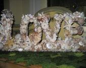 Seashell Love Sign Valentine Wedding, Engagement, Bridal Shower