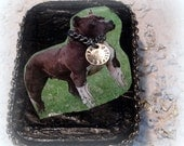 Pit Bull, Altered Tin Box, Memory Box, Black, Help support PIT BULL RESCUE