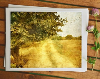 Rustic landscape photo art, travel photography, autumn fall colors, shabby chic decor, Scandinavian art