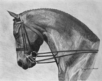 Power and Grace, dressage horse by Cindy Alvarado