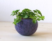 Free Shipping - Succulent vase / Plant pod / felted bowl / air plant vase / purple fall grape / housewarming gift