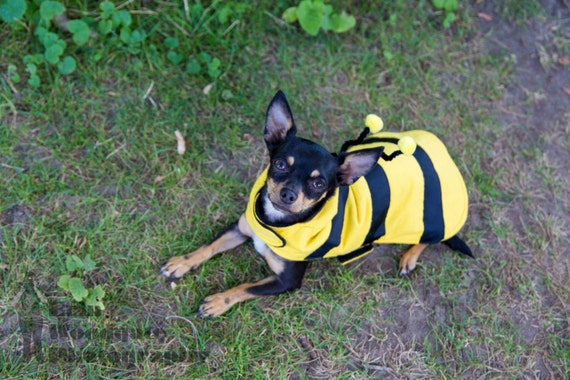 Bumble Bee Costume Size Xsmall, Small & Medium