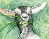 DOLLY The Happy, Fun & Colorful Goat. Watercolor Print of my Original