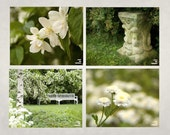 White garden, set of 4 photos, flower photograph, white flowers, peaceful garden, meditation garden,10x8,