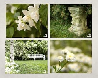White flower meadow, Nature photography, Meditation garden, Flower print, Jasmine photograph, White garden bench, Fairy garden, Set of 4