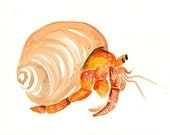 HERMIT  CRAB 5x7 Print-Art Print-animal Watercolor Print-Giclee Print-Nursery decor-Playroom Decor-Nursery wall art
