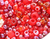 Christmas red Beads Mix, TOHO Seeds - N 3208, rocailles, glass beads - 10g - S263