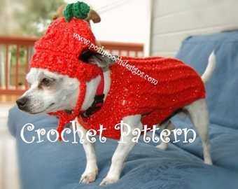 Instant Download Crochet Pattern - Pumpkin Dog Sweater and Hat  Small Dog 2-20 lbs