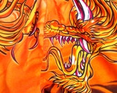 Vintage Shorts Swimsuit Dragon Skater Tattoo Small Adult Large Child