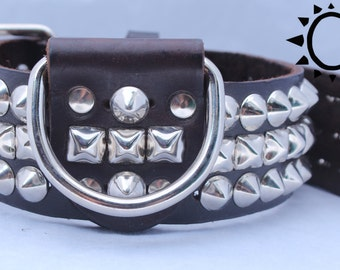 Wide Dark Brown Leather Dog Collar with Circle Studs