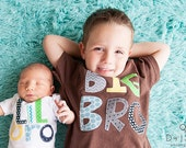 Big Brother Little Brother Little Sister Big Sister sibling shirts onesies set gift baby shower photo prop Patches and Puppies