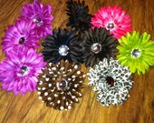 10 piece set of Flowers for hair bows crafts or accessories