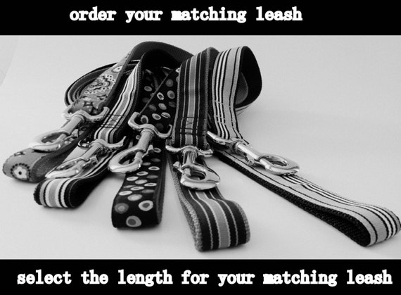 Matching Leash for Most of My Dog Collars - Match My Collar (Excludes Tartan Plaids and Multi Layered Collars) A Leash to Match Dog Collar