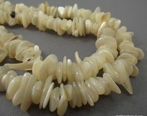 Ivory Mother of Pearl Beads, Large Chip Beads, 16 inch Strand, Whole Strand