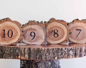 10 Country RUSTIC Wedding table numbers