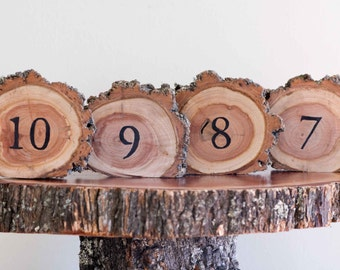 10 RUSTIC Country Wedding table numbers